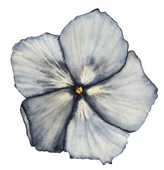 Prachtige aquareltekening van heldere bloemen en groene takken