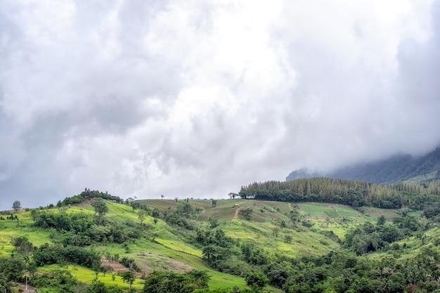 Prachtige bergen en landelijk landschap in het regenen.