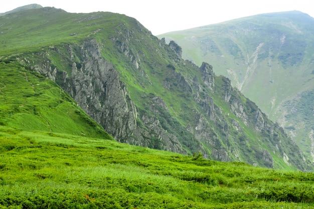 Prachtige bergen landschap