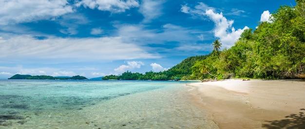 Prachtige blue lagoone met enkele bamboehutten, kordiris homestay, palmtree in front, gam island, west papuan, raja ampat, indonesië.