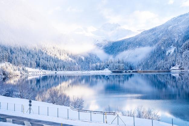 Prachtige bomen in winterlandschap in de vroege ochtend in sneeuwval