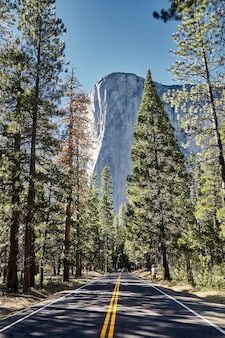 Prachtige el capitan-berg in het yosemite national park in californië, vs