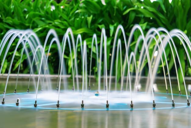 Prachtige fontein van tropische planten. tuindecoratie, spa, hotel. landschapsontwerp