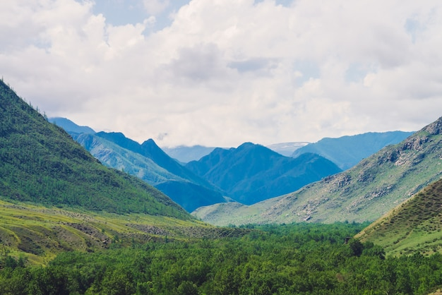 Prachtige gigantische bergen boven groene vallei met weide en bos in bewolkte dag.