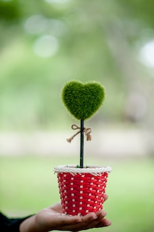 Prachtige groene hand en hart beelden valentijnsdag concept