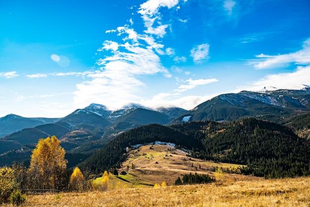 Prachtige kleurrijke bossen die de karpaten bedekken