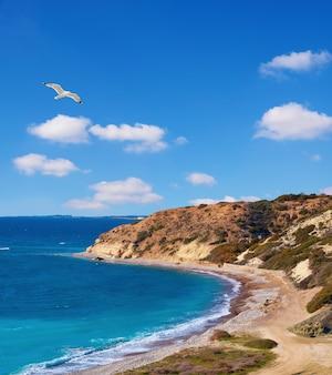 Prachtige kustlijn van cyprus in de buurt van paphos