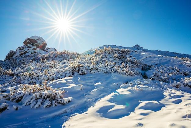 Prachtige landschappen bedekt met de eerste sneeuw met grote rotsachtige richels van de karpaten, helderblauwe lucht in het pittoreske oekraïne nabij het dorp dzembronya