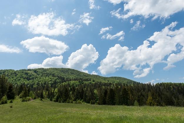 Prachtige landschappen van de oekraïense karpaten