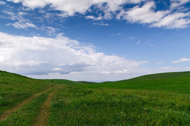 Prachtige lente en zomer landschap. berglandweg onder groene heuvels. weelderige groene heuvels, hoge bergen. lente bloeiend gras.