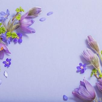 Prachtige lentebloemen op blauwe achtergrond