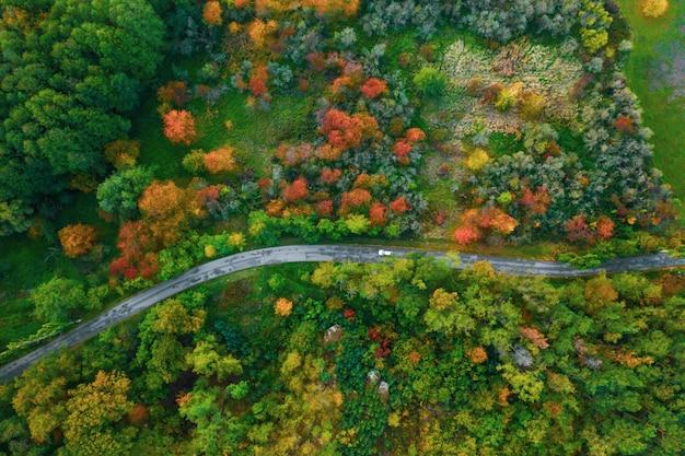 Prachtige luchtfoto van de weg met auto's tussen kleurrijke herfst bos