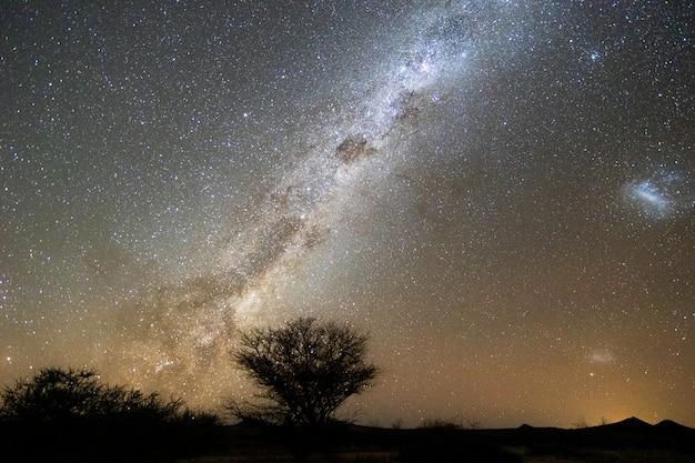 Prachtige nacht landschapsmening van melkweg en galactische kern over etosha national park camping, namibië