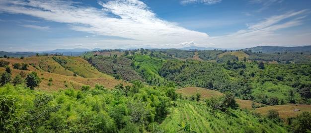 Prachtige natuurlijke schoonheid op de berg bij nan