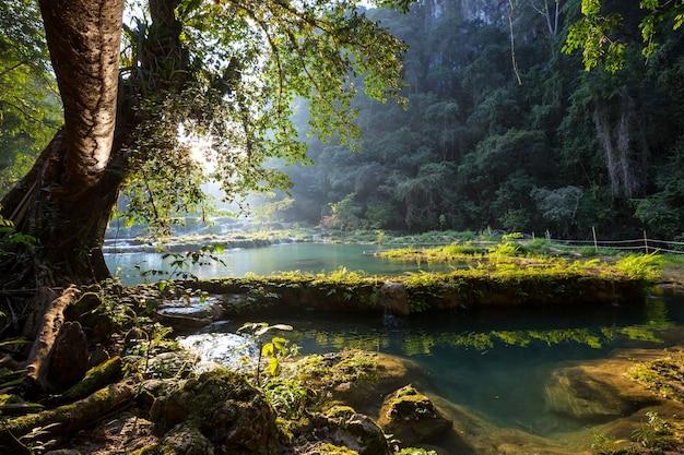 Prachtige natuurlijke zwembaden in semuc champey, lanquin, guatemala, midden-amerika