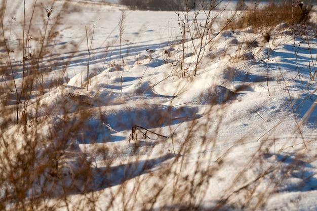 Prachtige natuurverschijnselen van het winterseizoen, bedekte bodem en gras met een dikke laag sneeuw na een cycloon met stormen en sneeuwval, koud ijzig winterweer en sneeuwverstuivingen