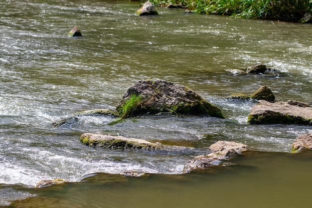 Prachtige rivier met stenen in de zomer op een zonnige dag.