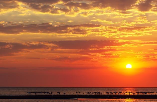 Prachtige rode zonsondergang, donkere wolken en oceaan aan de horizon
