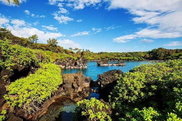 Prachtige tropische landschappen op het eiland maui, hawaii