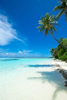 Prachtige tropische malediven eiland met strand, zee en blauwe lucht voor natuur vakantie vakantie achtergrond concept