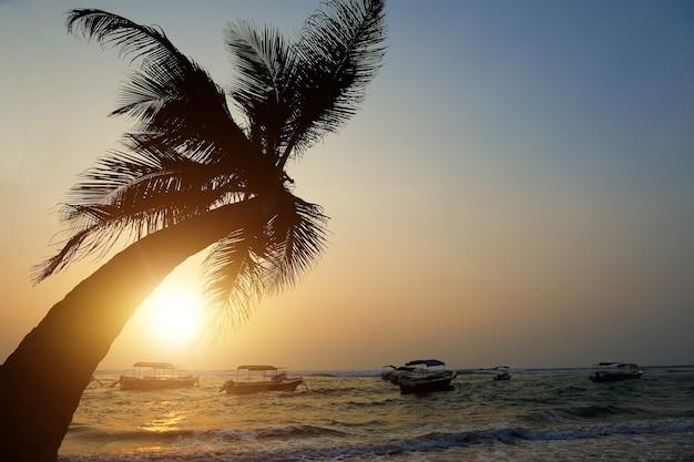 Prachtige tropische zonsondergang met palmbomen op het strand