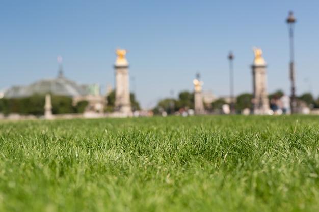 Prachtige tuin in parijs