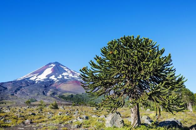 Prachtige vulkanische landschappen in chili, zuid-amerika