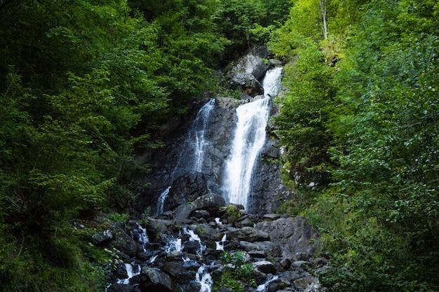 Prachtige waterval in de bergen in het bos.