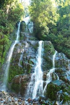 Prachtige waterval in het bos omgeven door groene bomen