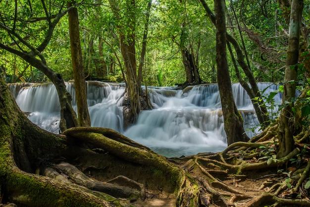 Prachtige waterval op bos