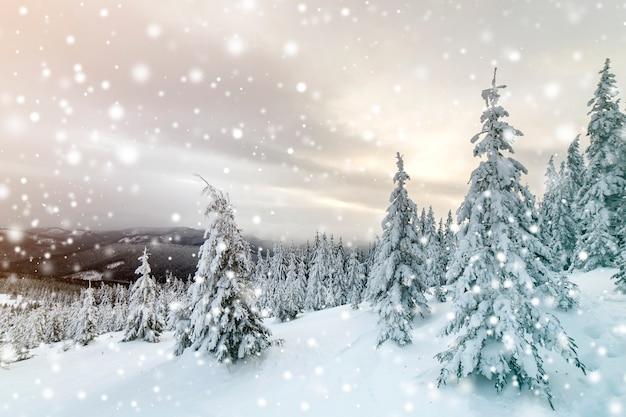 Prachtige winter berglandschap