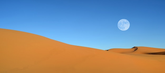 Prachtige zandduinen en blauwe hemel
