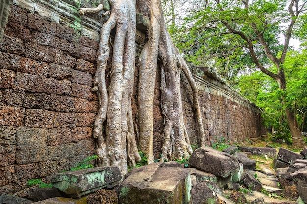 Preah khan-tempel in angkor wat in siem reap, cambodja