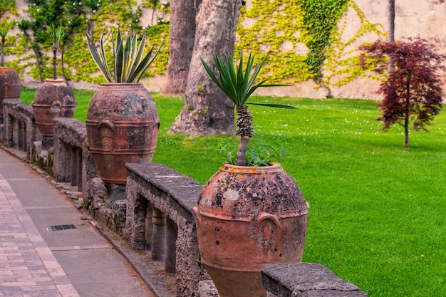 Prentbriefkaart met terras met bloemen en bomen in de tuin amalfikust, campanië, italië