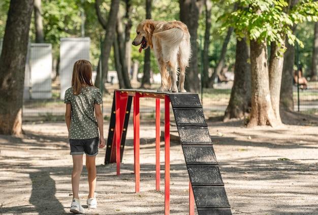 Preteen meisje opleiding golden retriever hond in het park. vrouwelijk kind met rasechte huisdier labrador die buiten traint