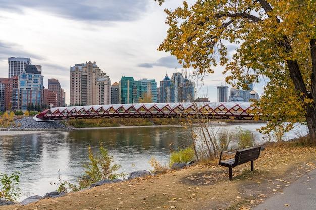Prince's island park vredesbrug. herfst gebladerte in het centrum van calgary bow rivier, alberta, canada.
