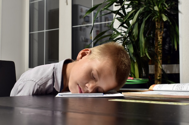 Problemen met schoolonderwijs. vermoeidheid en werkdruk van kinderen op school.