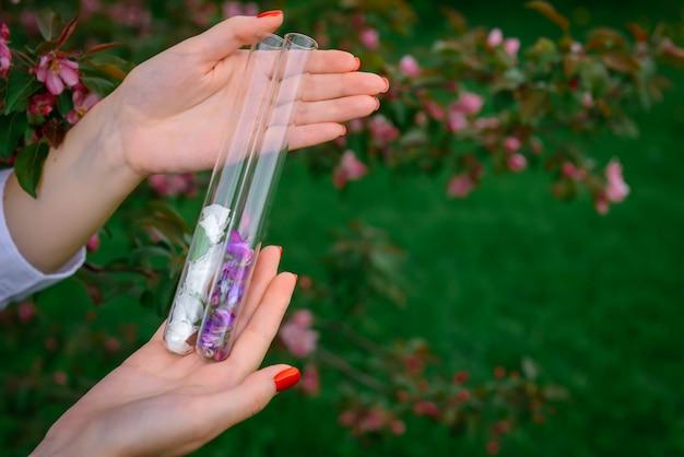 Proces van het verzamelen van planten voor de parfumindustrie