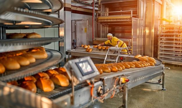 Productie van broodbakkerijvoedselfabriek met verse producten. geautomatiseerde productie van bakkerijproducten.