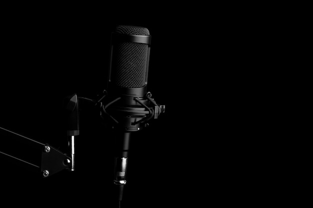 Professionele condensator studiomicrofoon