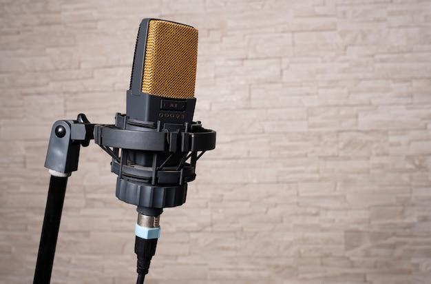 Professionele microfoon van de laatste generatie