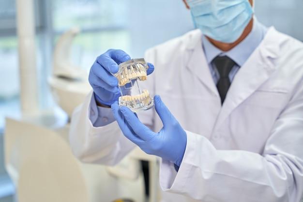 Professionele orthodontist demonstreert een mal van menselijke tanden