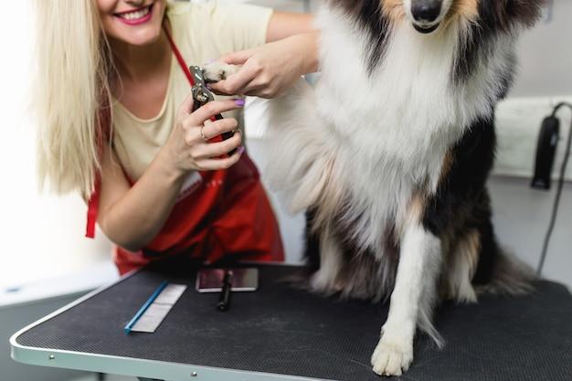 Professionele trimmer voor het knippen van hondennagels.