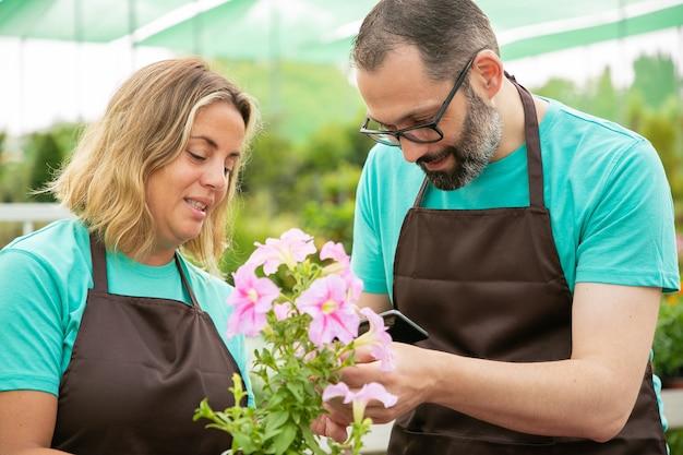 Professionele tuinders die planten kweken en ze op de telefoon fotograferen