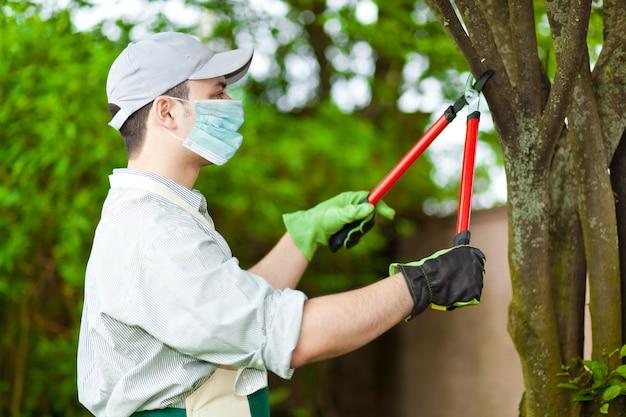 Professionele tuinman die een boom snoeien die een masker, coronavirusconcept dragen