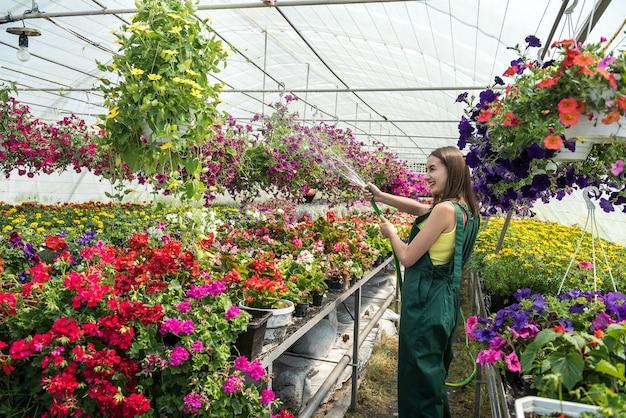 Professionele vrouwelijke tuinman dagelijks drenken en verzorging bloemen in een kas.