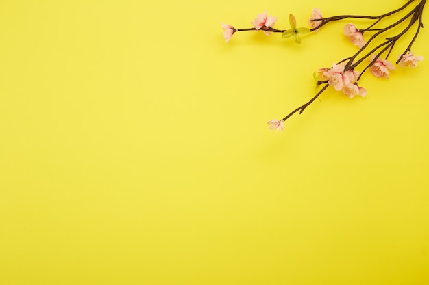 Pruimbloemen op gele achtergrond