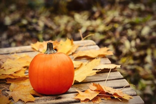 Pumpking en muple bladeren op een tafel in een tuin