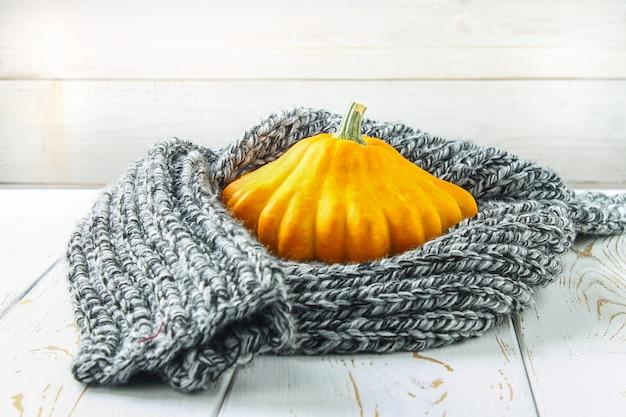 Pumpkinpasteypan in een warme comfortabele sjaal op een witte houten lijst. herfst oogst.