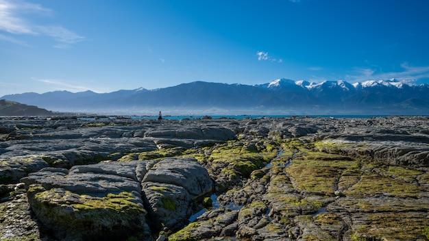 Punakaiki pancake rock in nieuw-zeeland